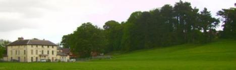 Llanrumney Lower Rookery