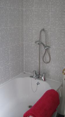 Bath with Over Bath Shower