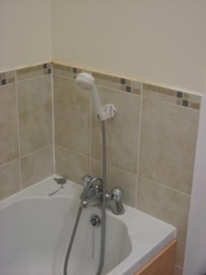 P0036 family Bathroom Bath with Shower