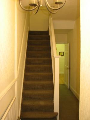 Carpeted Hallway